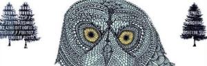 owl1 copy